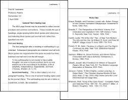 essay writer online dissertation hypothesis  essay writer online
