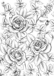 Select from 35478 printable coloring pages of cartoons, animals, nature, bible and many more. Pin On Flowers Coloring Pages