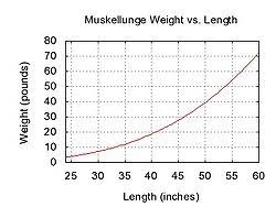 Northern Pike Age Chart Muskellunge Wikipedia