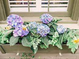 Get reviews, spoilers, coupons, updates and more these services combine the best of both worlds: Window Box Planter Tips Hgtv