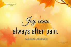 Joy Quotes Extraordinary Joy Quotes And Sayings Images Pictures CoolNSmart