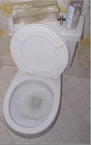 Image result for toilet