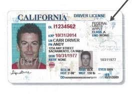 Opinión Licencias Conducir Sacan De Oscuridad La Los