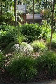 gordon native gardens by mallee design more the best coastal ideas on australian garden