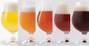 Actual Beer Color Vs Predicted Color Craft Beer Brewing