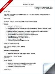 Nursing Student Resumes Free Resume Example And Writing Download