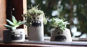 Uma ótima dica e vem sendo usado atualmente é plantar suculentas em vaso de concreto. Vasos De Cimento Como Fazer Um Modelo Por R 1