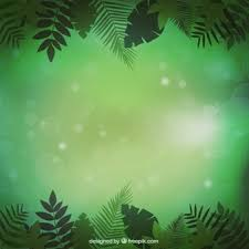 jungle background vector. Interesting Vector Jungle Vegetation Background With Background Vector G