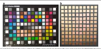 Colour Quality Of Facial Prostheses In Additive