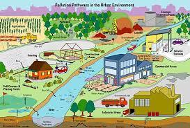 Pollution Pathways