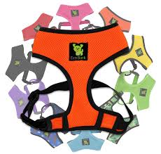 Ecobark Max Comfort And Control Dog Harness No Pull No Choke Design Luxurious Padded Vest Eco Friendly Puppies Dogs