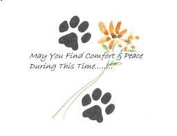 Sympathy Card Pet Loss Loss Of A Pet Card Condolence Cards For Pets Pet Sympathy Card Pet