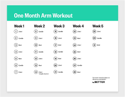 strength training plan to tone your arms
