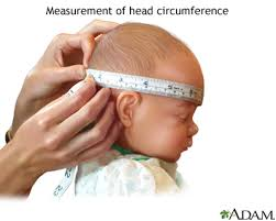 Infant Head Growth Chart Growth Chart