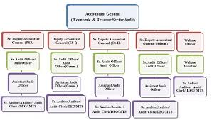 Cag Organisation Chart Pag E Rsa Organization Chart Ag Rajasthan