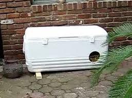 igloocoolershelter The picnic cooler house ...