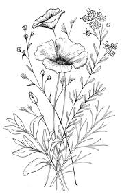types of flowers drawing. 25 best ideas about flower sketches on pinterest | drawings . types of flowers drawing d