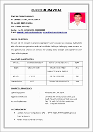 Resume For Job Application Example Free Download