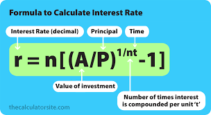 Compound Interest Formula With Examples