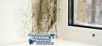 ... bathroom mold smell in bathroom on bathroom intended mildew smell what  causes it how to eliminate  carpet pad ...