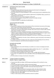 Backend Developer Resume Sample Backend Developer Resume Samples Velvet Jobs 2