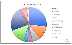 Minnesota State Budget Pie Chart Report On State Immigration Laws January June 2017