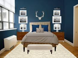 Small Bedroom Color Schemes Bedroom Colour Schemes Blue Carpet Vidalondon Suprising Age With