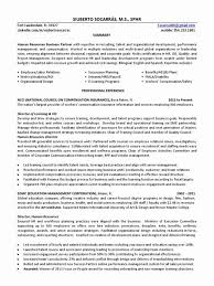 Data Analytics Cover Letter Cpa Cover Letter For Financial Statements Inspirational Professional