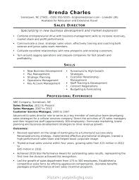 Business Plan Sample Format Uatour Org