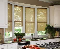 window roller shades. Plain Roller Shades And Window Roller