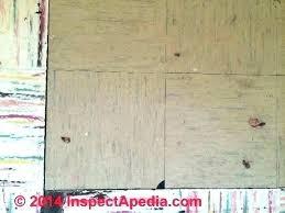asbestos tile identification how to identify asbestos tile recognize floor tiles asbestos tile adhesive identification asbestos