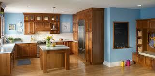 Kitchen Cabinet Door Organizer Superb Kitchen Cabinet Door Organizer Greenvirals Style