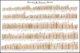 48 All Inclusive Ammo Chart