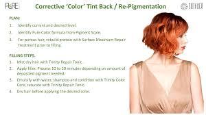 Pure Hair Color Certification At Surface Hair Saskatchewan