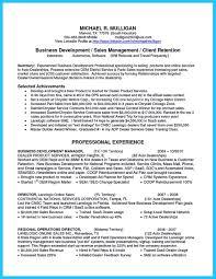 Business Development Manager Resume Badak Plan For New Sales