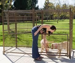 advatek dog kennel