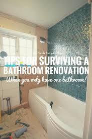surviving a bathroom renovation