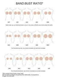 Sister Sizes Why Every Woman Should Know For Bra Fitting