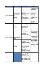Eemb 3 Animal Diversity Chart Sheet1 Pdf Phyla Classes To