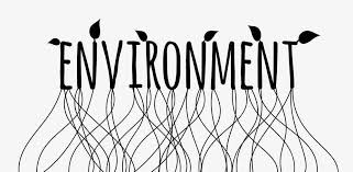 essay for kids on environment one word two colors twenty minutes still testing