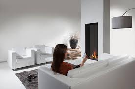 sky gas fireplace