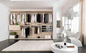 Small Bedroom With Walk In Closet Build Walk In Closet Zampco