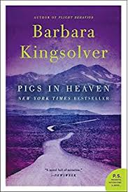high tide in tucson essays from now or never barbara kingsolver pigs in heaven a novel