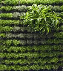 Small Picture 50 best Wall Garden Design applicative vertical garden