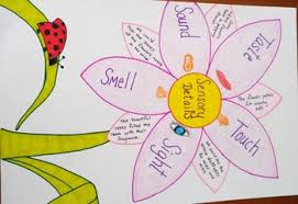 Sensory Details Anchor Chart Sensory Details Anchor Chart Hand Drawn By Suzanne Pettine