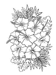 flowers coloring book designs stroll