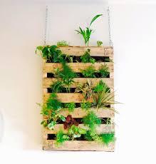 indoor hanging garden ideas incredible tutorial awesome indoor living wall vertical garden made from 35