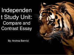 life of pi essay topics life of pi essay prompts