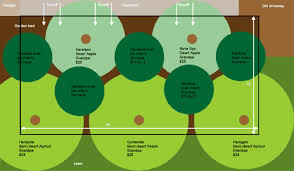 Fruit Tree Guild Plans Fruit Tree Garden Growing Fruit