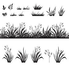 tall grass silhouette. Simple Tall Seamless And Set Of Grass Flowers Black Silhouette Isolated On White  Background Vector  Stock Colourbox Intended Tall Grass Silhouette L